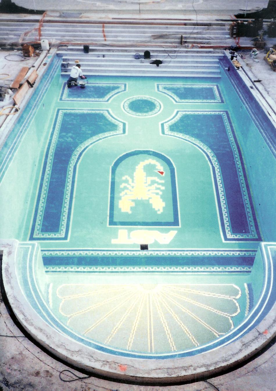 Pose mosaique piscine tripodi fr res les sp cialistes de for Frise carrelage piscine